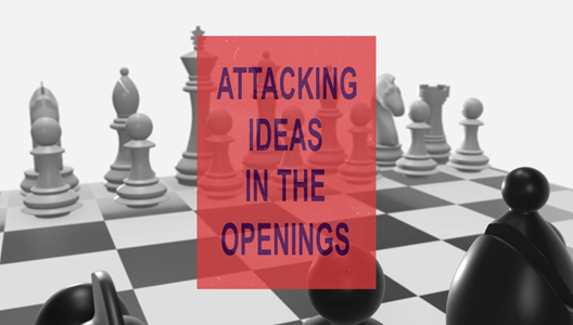 GM Petrov's Attacking Ideas in the Openings - Video 9: Queen's Gambit for White